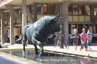 e7687634b554 Pizarro Guareña (Badajoz)  EL TORO