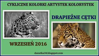 https://danutka38.blogspot.com/2016/09/iii-edycja-cyklicznych-kolorkow-u.html
