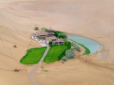 Amazing Oasis from middel of desert