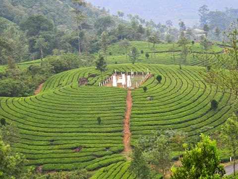 distance between valparai and munnar