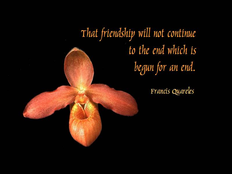 Inspirational Quotes About Friendship: Cute Friendship Quotes, Inspiring Friends Poems