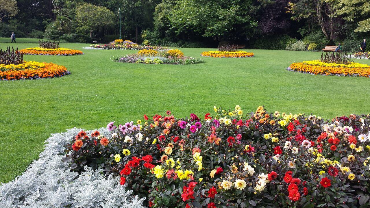 javier paz dise o de jardines y restauraci n del paisaje On diseño de jardines y restauración del paisaje