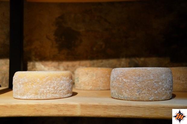 Špacapanova Hiša, formaggio del Carso