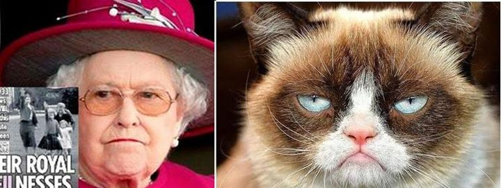 QEII and Grumpy Cat