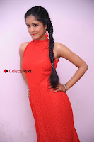Kannada Actress Chaitra in Red Dress at Damki Damar Movie Audio Release  0005.jpg