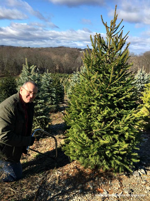 My husband cutting down our Christmas tree from Walking on Sunshine.