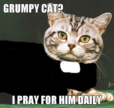 Grumpy Cat? I pray for him daily