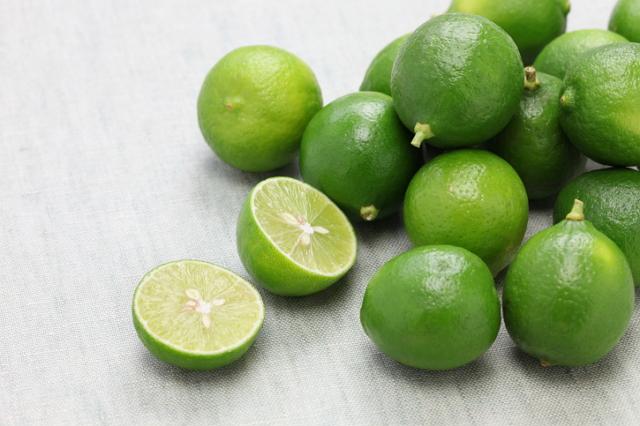 tanaman hias buah jeruk limo