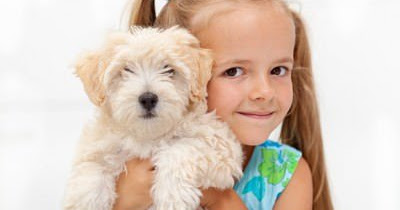 The Busy Woman's Guide to Surviving Motherhood: Every Kid Really Needs a Pet