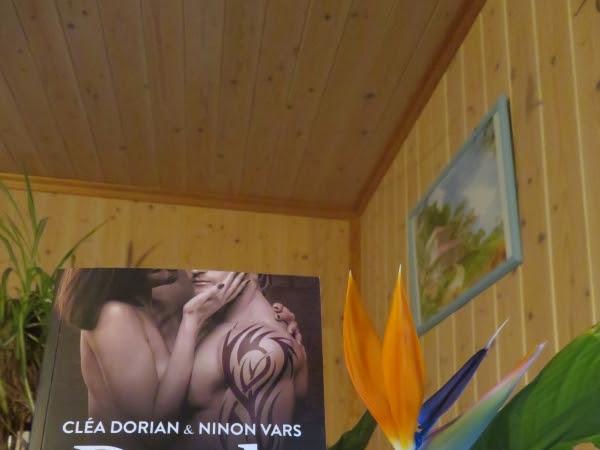 Dark love de Cléa Dorian et Ninon Vars