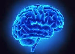 Research indicates that four out of five people (80 percent) with memory issues will be detected by this test.