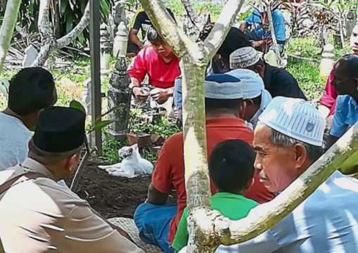 The white cat (pic) refusing to leave its master's grave at the Al-Hidayah Mosque in Kelibang, Malaysia.