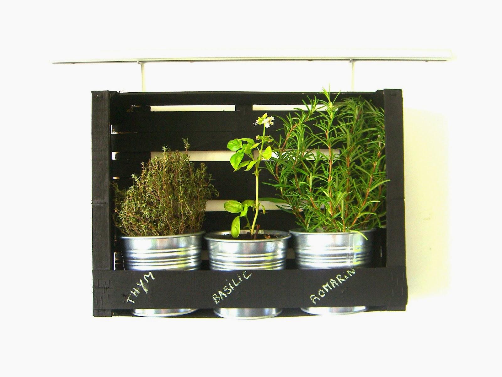 decoration cuisine plantes aromatiques. Black Bedroom Furniture Sets. Home Design Ideas