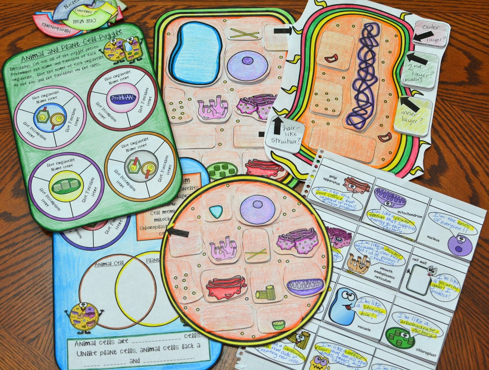 Mrs G S Classroom Science Resources