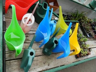 Sunnybrook McLean House greenhouse watering cans by garden muses-not another Toronto gardening blog