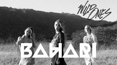 Dowload Lagu Bahari - Wild Ones Mp3