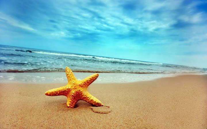 kumsala ait sahil resimleri