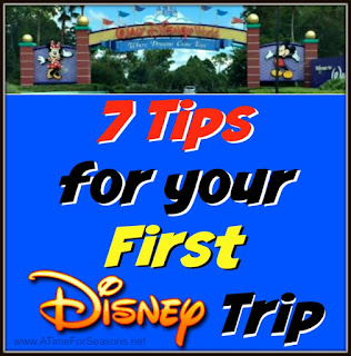 http://www.atimeforseasons.net/2016/06/first-disney-trip-10-tips-giveaway.html