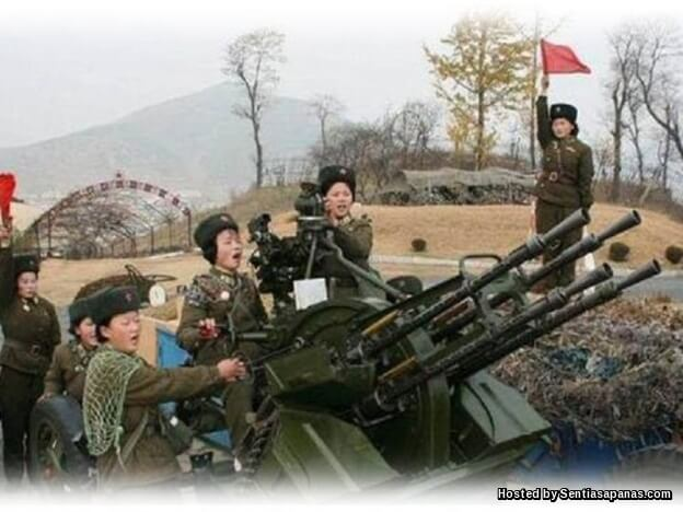 Meriam anti-pesawat Korea Utara