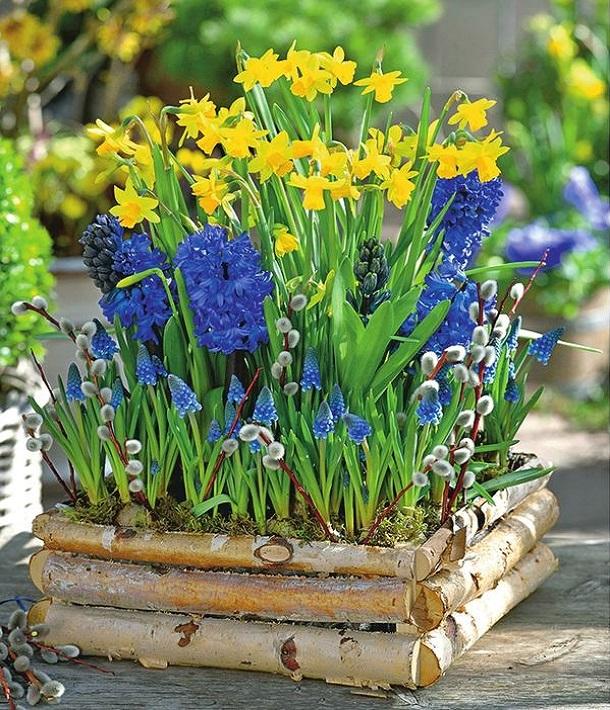 Смешанный весенний цветник