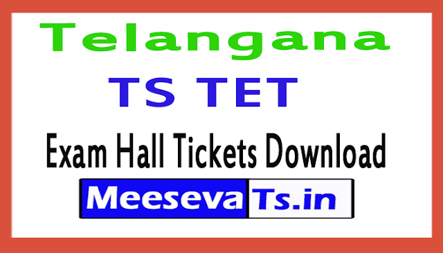 Telangana TS TET Exam Hall Ticket