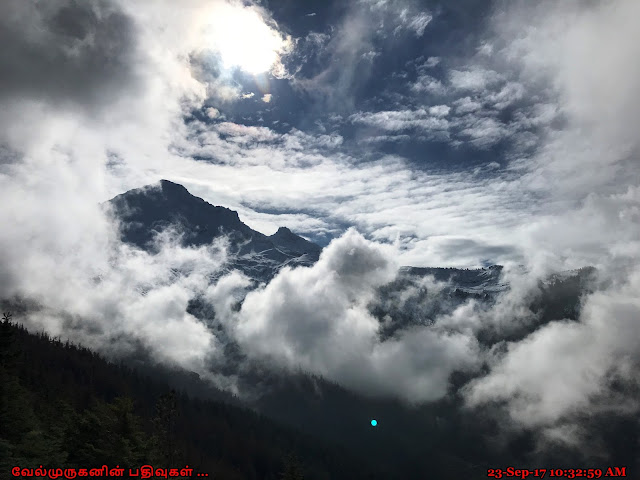 McNeil Point Hike Mount Hood Wilderness