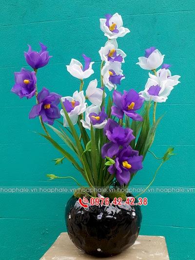 Hoa da pha le tai Phu Do