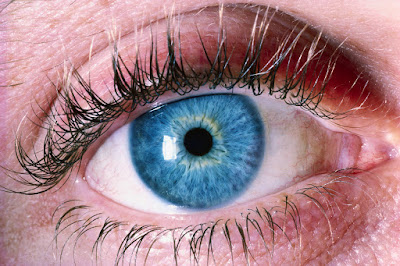 Nutritional Supplements and Vision Loss