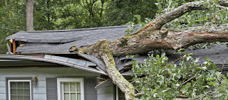 Tree fell on house emergency Atlanta Ga