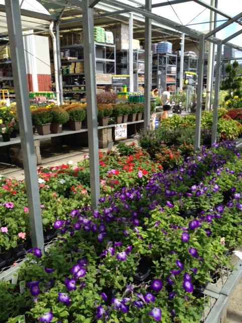 Fall Decorating At Home Depot's Garden Center