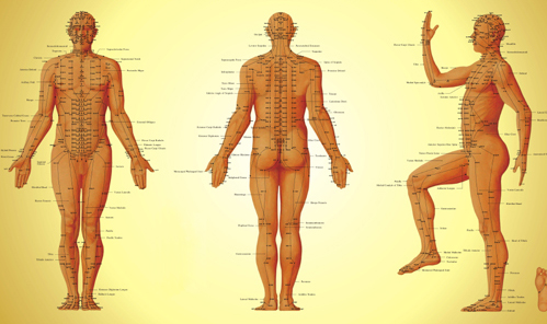 Resultado de imagem para pontos de dor