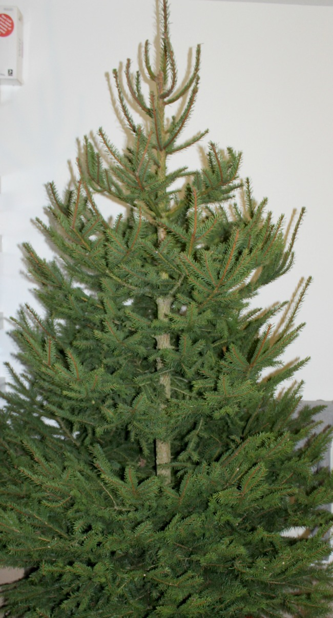 Real vs fake christmas trees: the ultimate debate. Nourish ME: www.nourishmeblog.co.uk