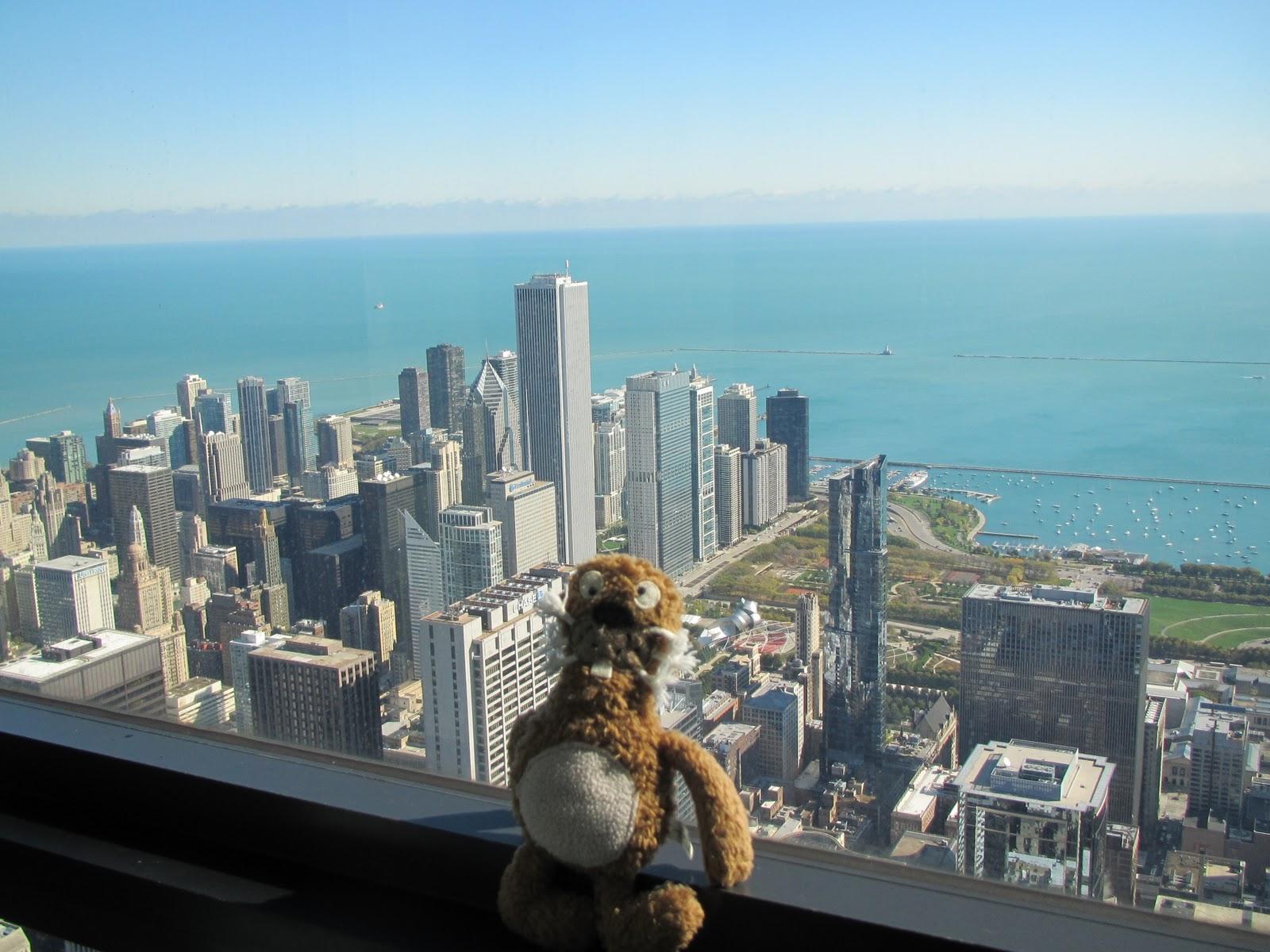 chicago silberne bohne