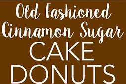 OLD FASHIONED CINNAMON SUGAR BAKED CAKE DONUTS