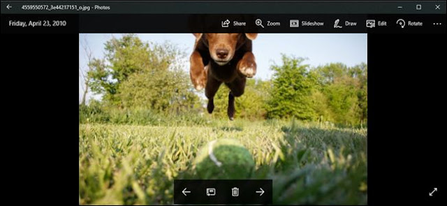 How to Use Windows 10's Built-In Photos App
