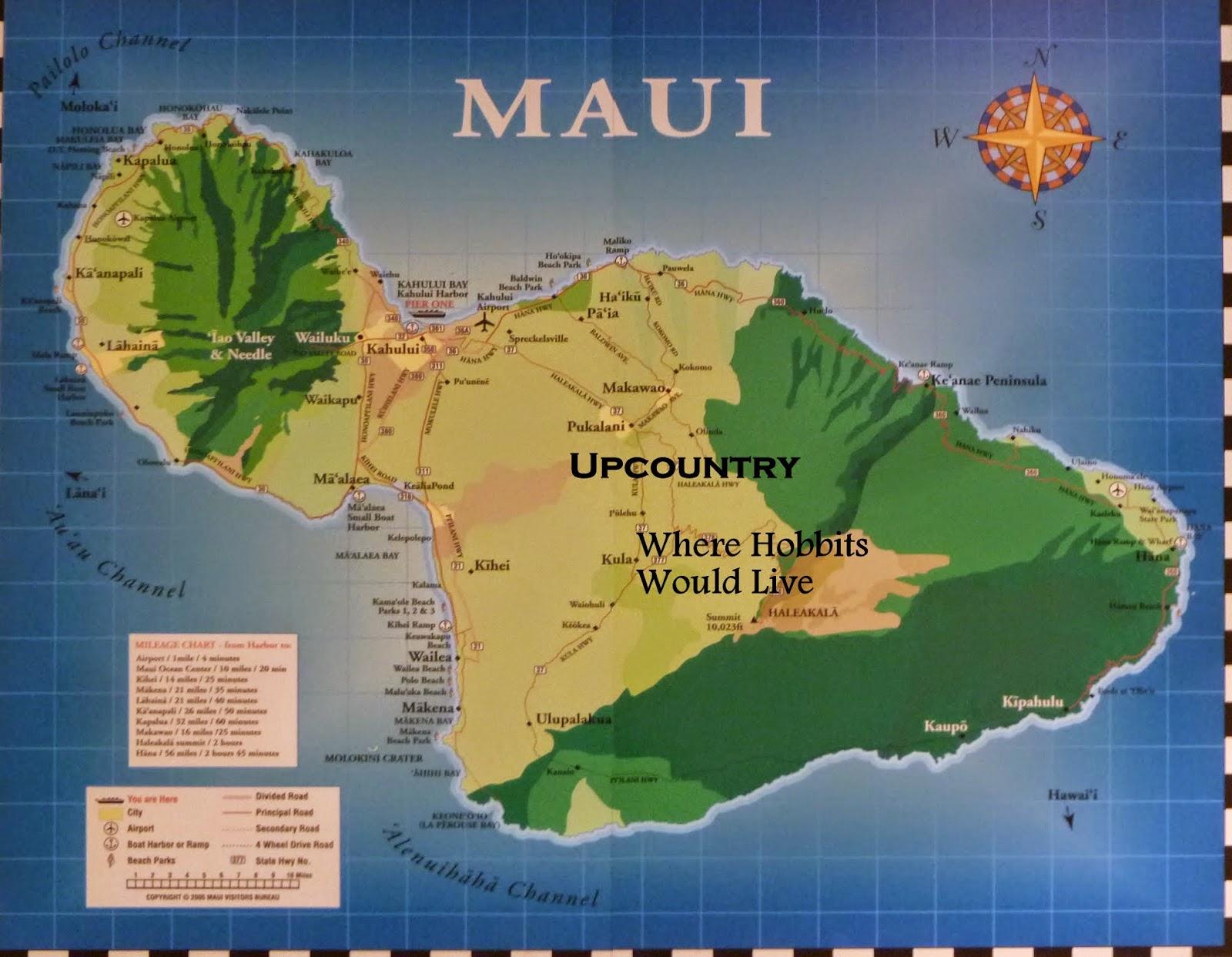 Maui Jungalow April 2015