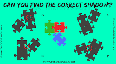 Answer of Jigsaw Game Shadow Puzzle