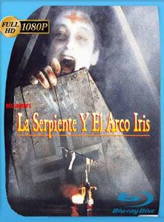 La Serpiente Y El Arco Iris 1988HD [1080p] Latino [GoogleDrive] SilvestreHD