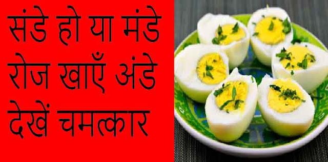 संडे हो या मंडे रोज खाएँ अंडे देखें चमत्कार