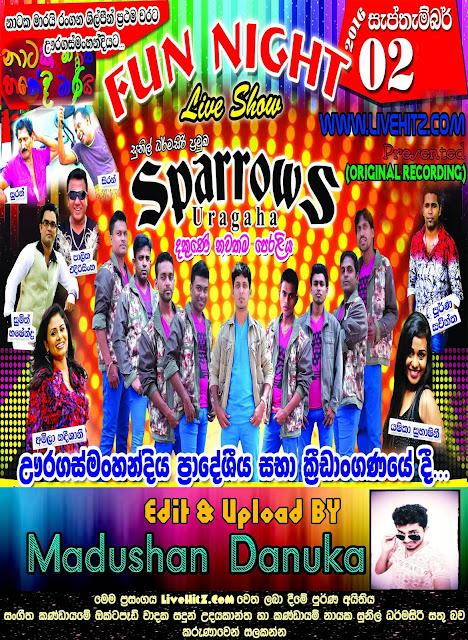 SPARROWS LIVE IN URAGASMANHANDIYA 2016-09-02