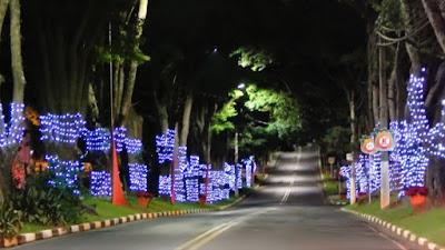 Pouco importam as luzes no caminho se você tiver que empreender uma jornada sozinho.