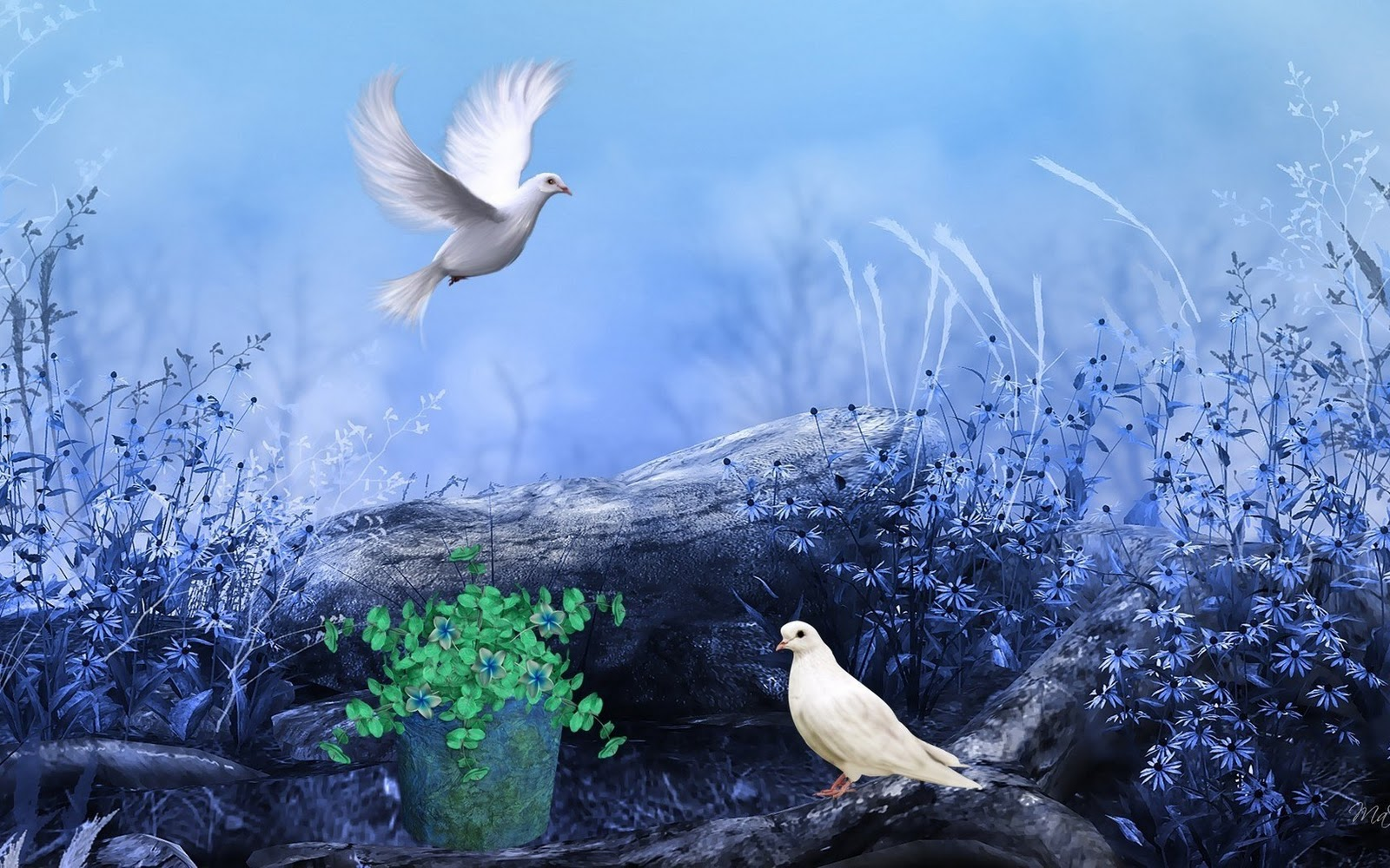Beautiful Wallpapers Of Lonely Girl White Pigeons Nature Flowers Colors Paint Hd Wallpaper