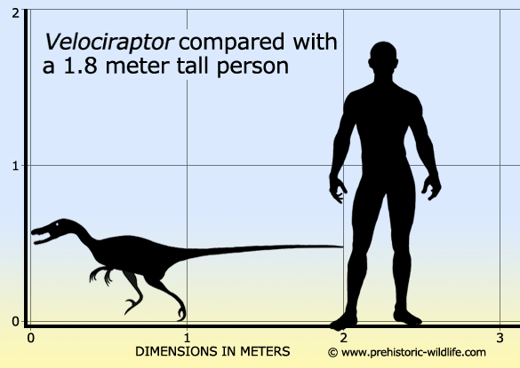 Volo's Guide to Absurdly Small Dinosaurs