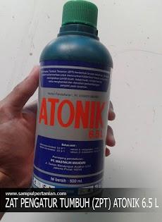 Zat Pengatur Tumbuh ATONIK 6.5 L (Bahan Aktif, Manfaat dan Dosis penggunaan)