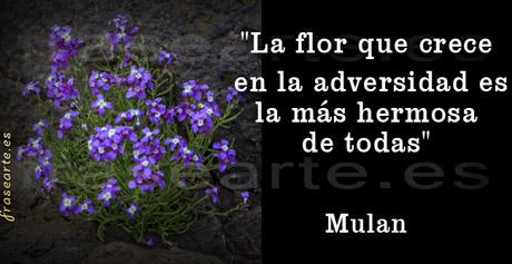 Citas célebres de Mulan