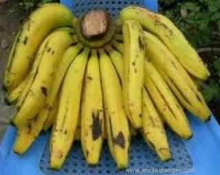 pisang ambon kuning