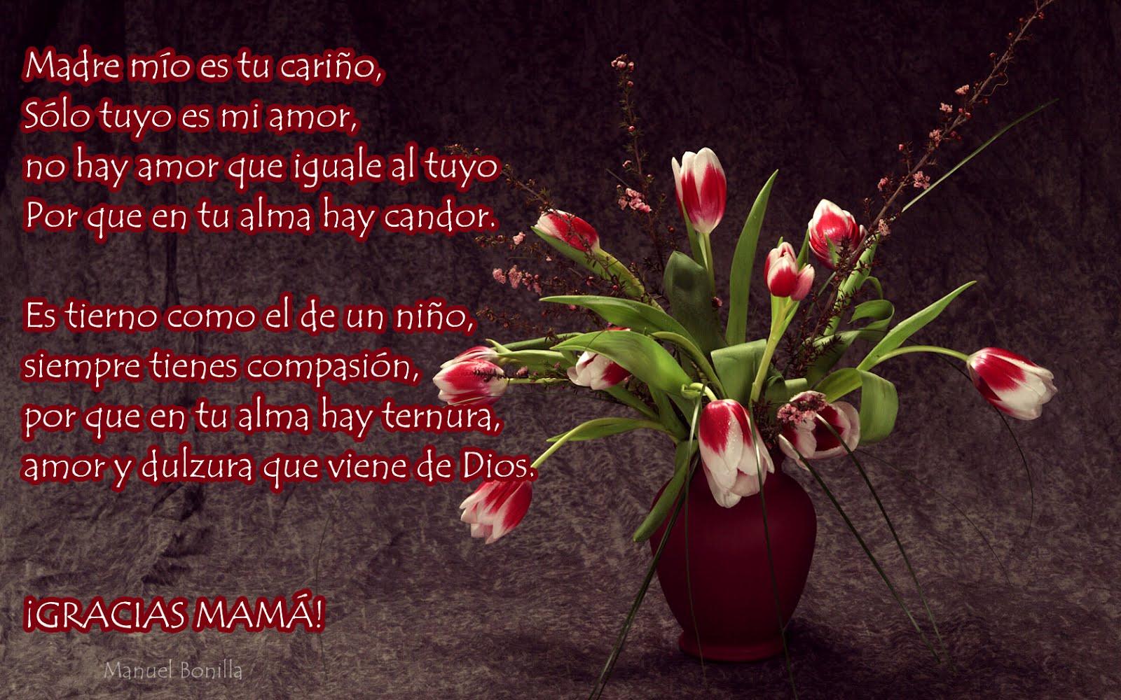 Idool Mensajes Con Flores Para El Dia De Las Madres Viii Wallpaper
