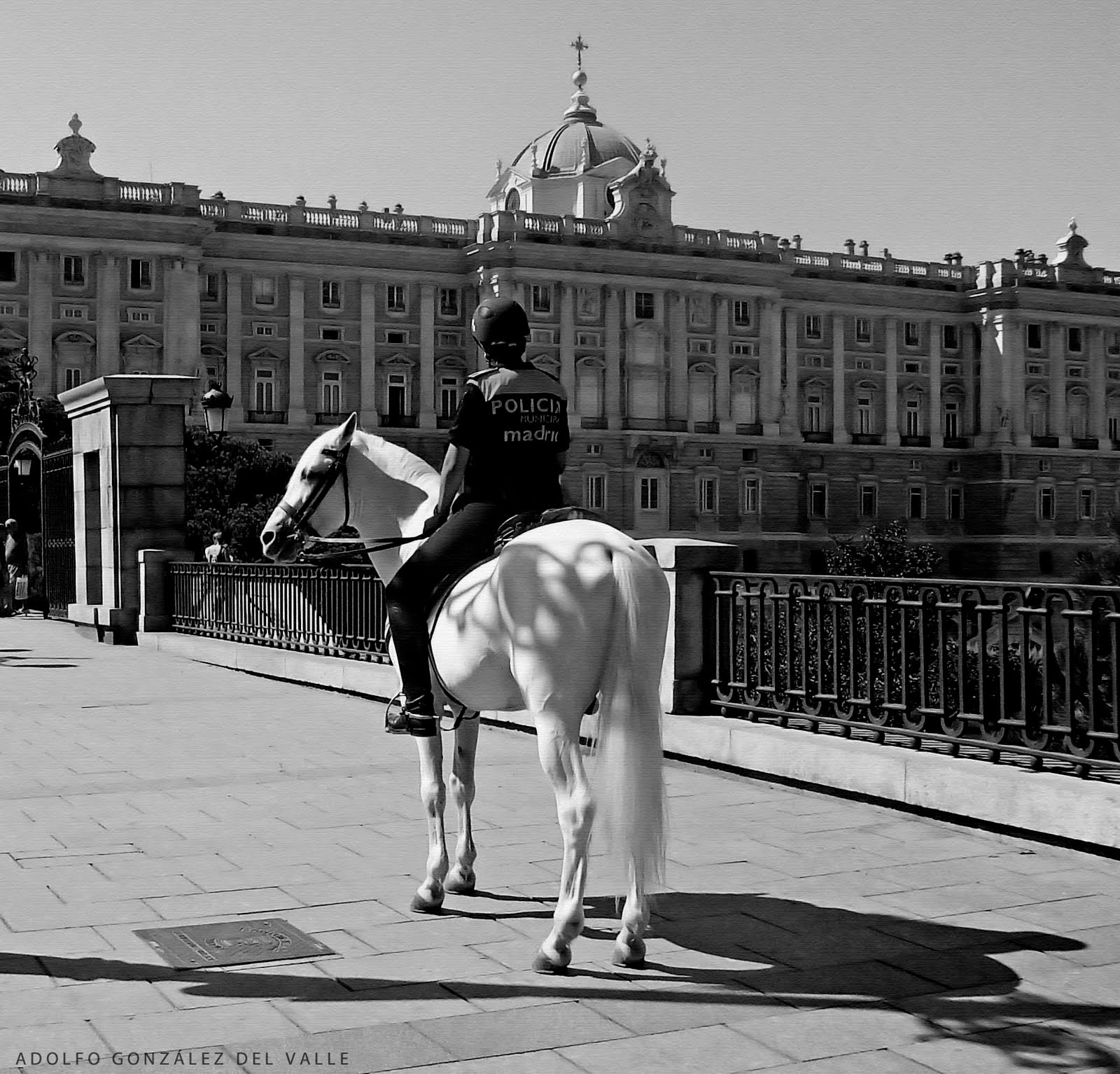 Caballos Follando Con Mujeres Porno Gratis ver viejas cogiendo con caballos