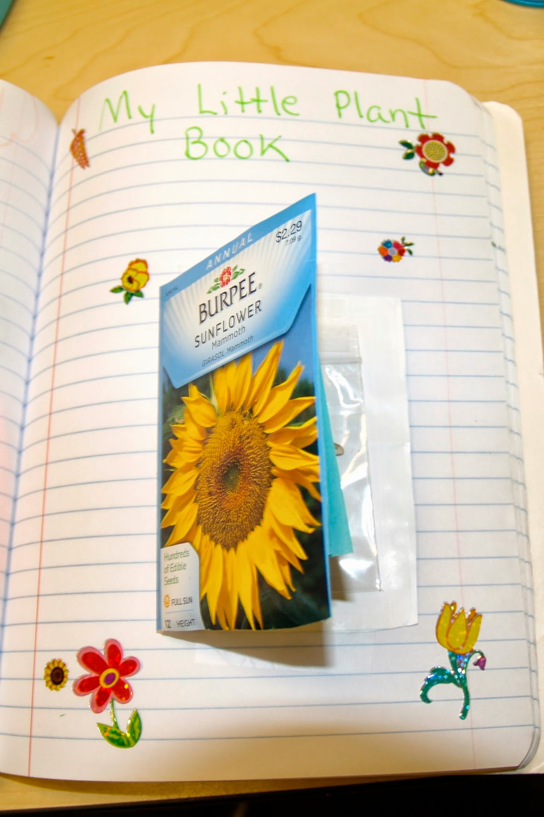 Teaching Science With Lynda Seed Book Out Of A Seed