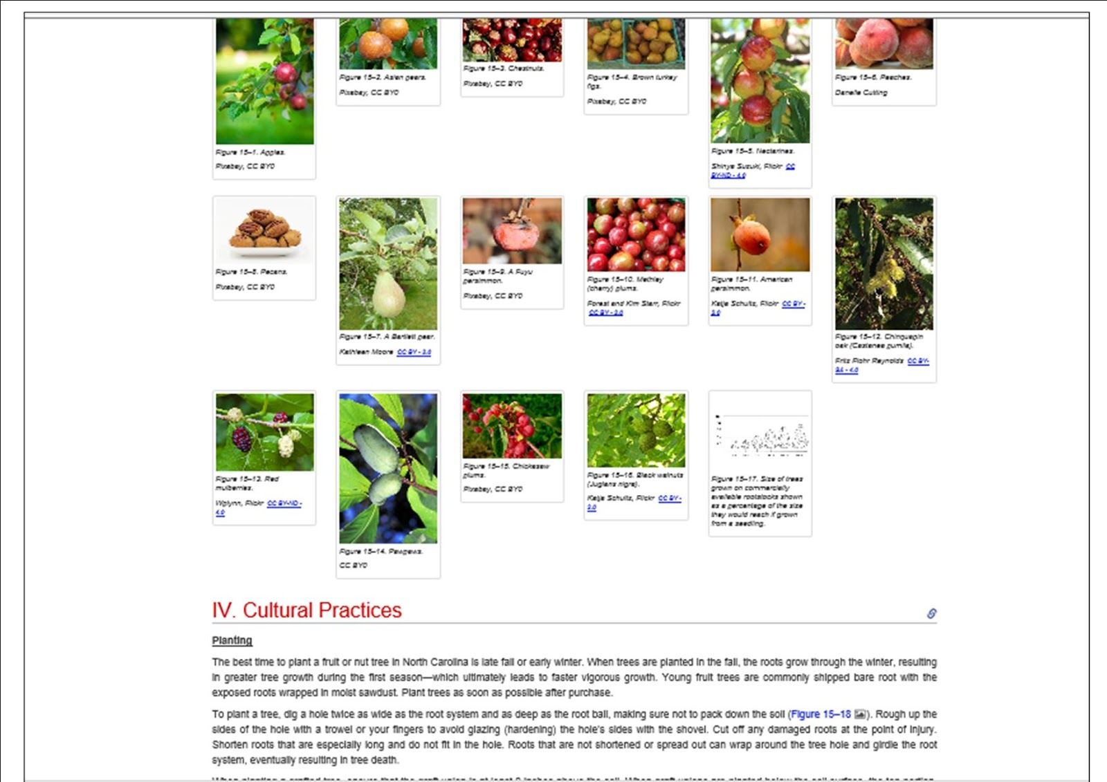 If You Would Like To Research All Of The Plant Topics Taught Through The NC  Cooperative Extension Master Gardener Program, (minus The Live Lectures Of  ...